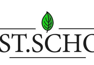 First.School – Первая школа современных родителей
